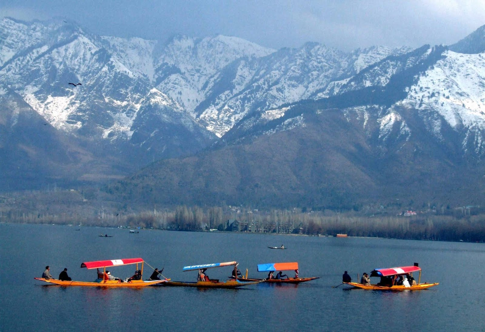 Golden Triangle and Kashmir Tour